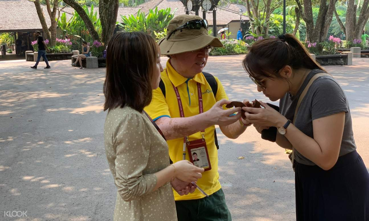 tour guide showing a fruit to two guests